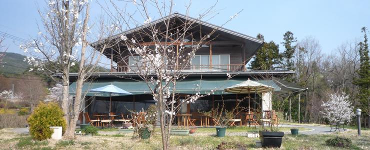 リチェルカイタリアンレストラン
